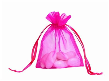 Hot Pink Organza Bags (Set of 10)
