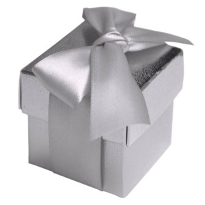 Silver Favour Boxes With Lids (Set of 10)