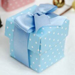 Blue Polka Dot Favour Boxes with Lids (Set of 10)