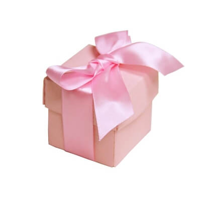Pink Favour Boxes With Lids (Set of 10)