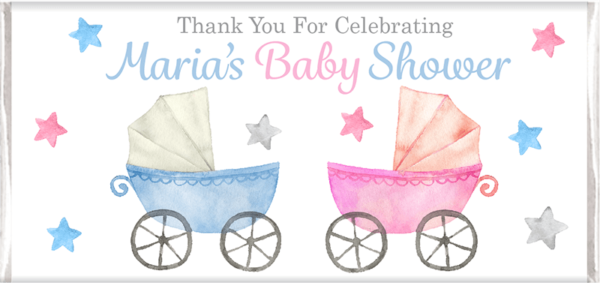 Blue and pink baby shower